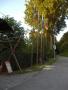 2009-06-13_20-40-17_Jubil__um