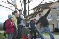 2010-04-03_10-26-54_OFA_2010